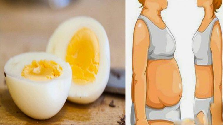 رجيم البيض المسلوق لتخسيس 10 كيلو في أسبوعين فقط